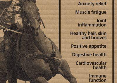 horse mix info